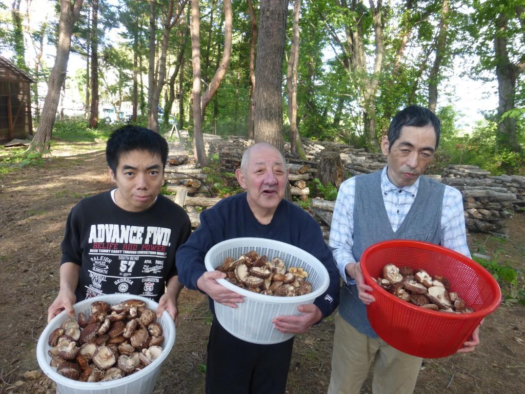 椎茸収穫後の様子 青森県弘前市・拓光園グループ